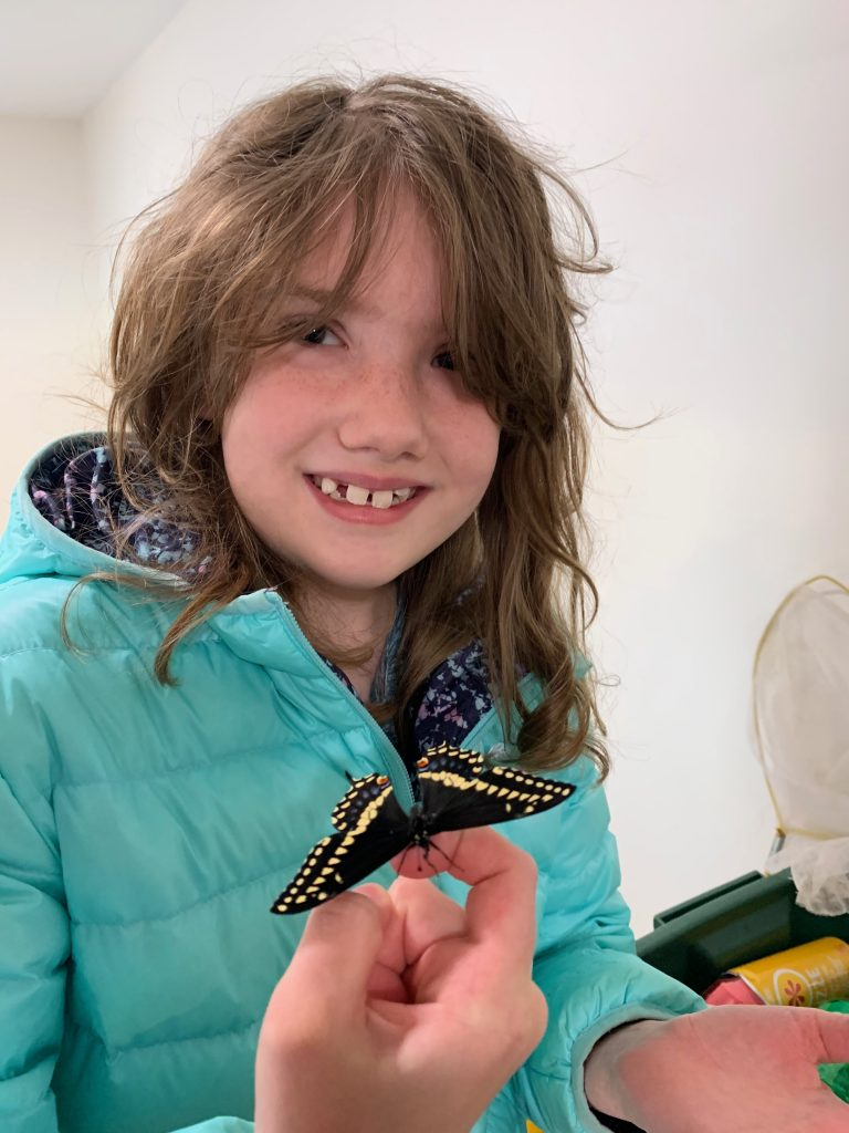 A young girl wearing a light blue winter jacket is holding a black swallowtail butterfly in her hand